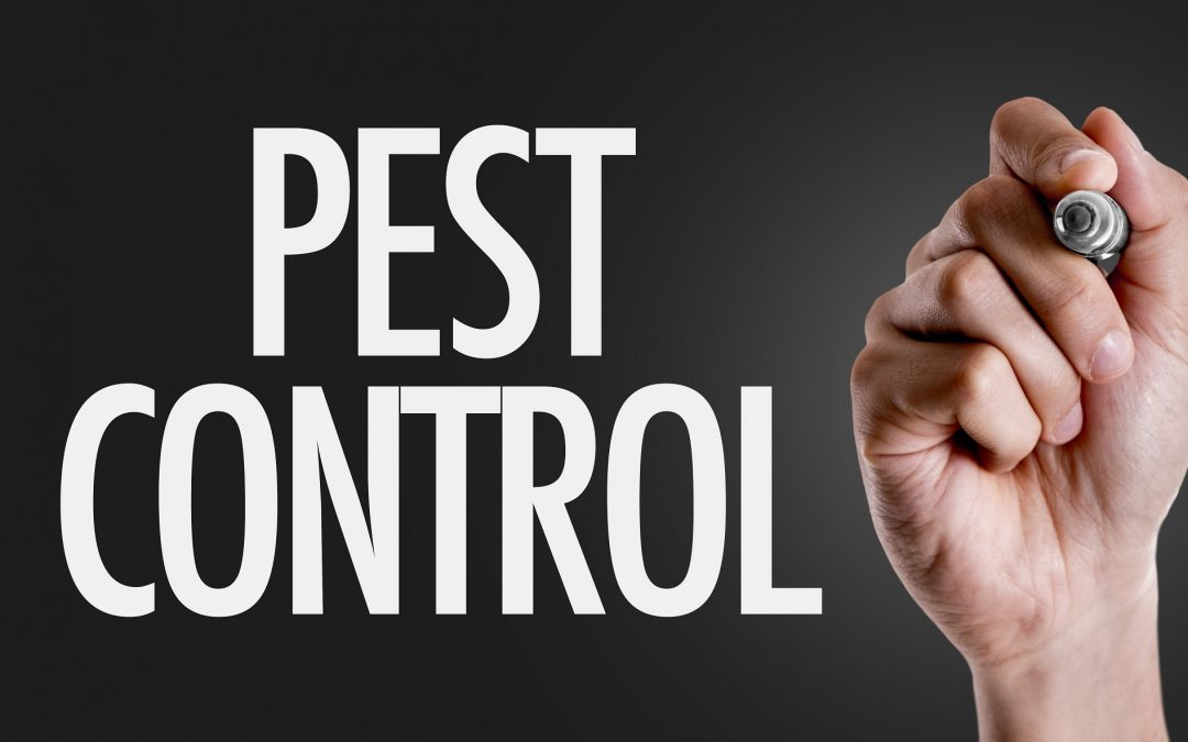 Valuing Your Pest Control Business
